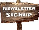 img-newsletter2